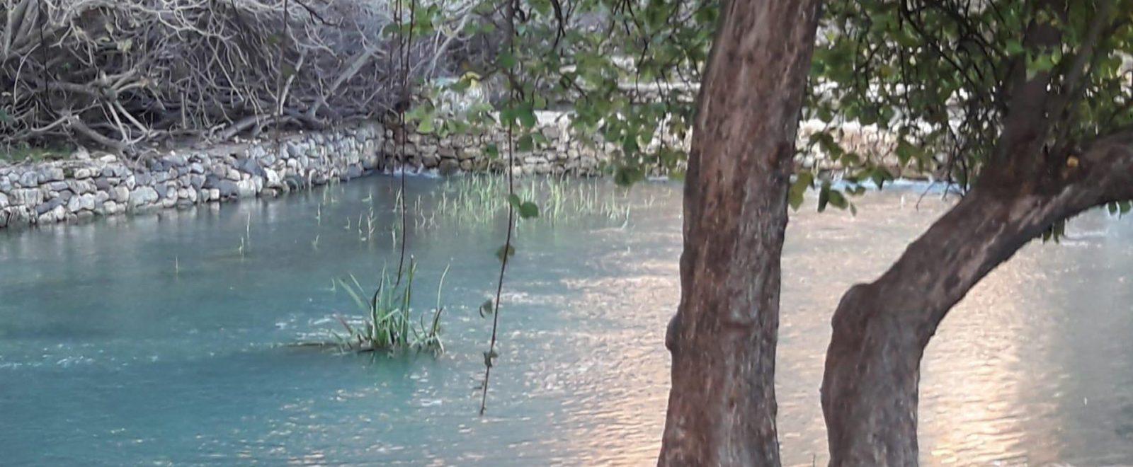 Banias National Park