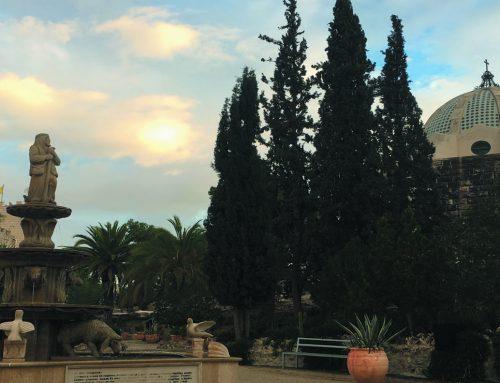 The Shepherd's Field – Bethlehem